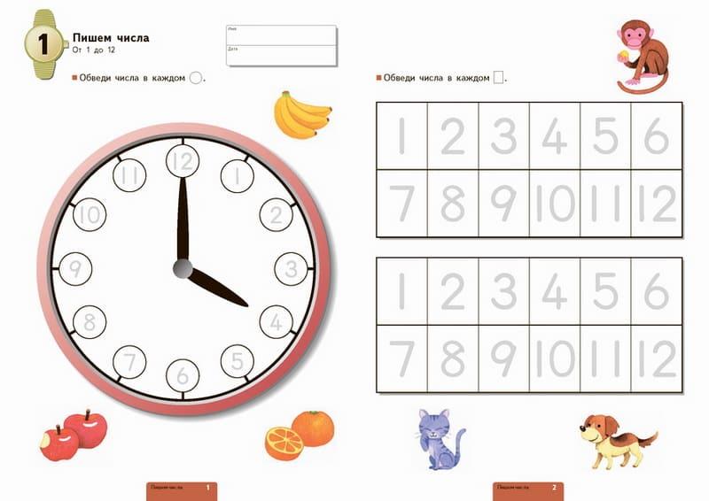 Учимся определять время. Час и полчаса