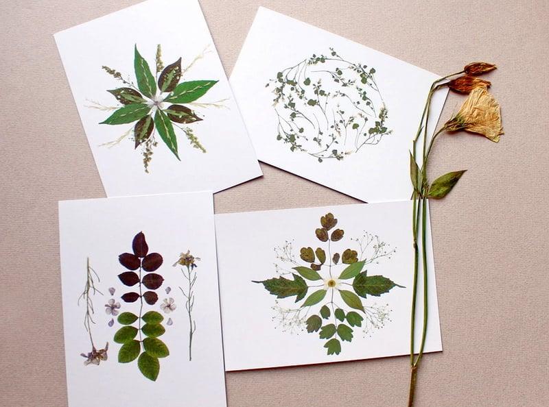 Как сделать с ребенком гербарий